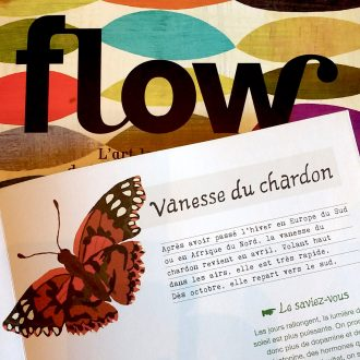 vanesse du chardon dans flow magazine. Illustration Brie Harrison.