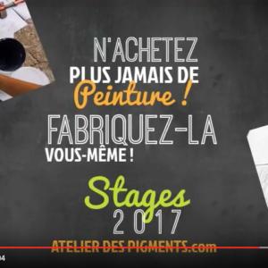 Stages 2017 : présentation en vidéo